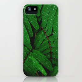Layers Of Wet Green Fern Leaves Patterns In Nature iPhone Case