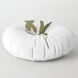 Eucalyptus Leaves Floor Pillow