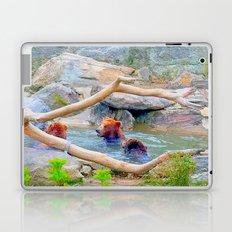 Wild Bears Laptop & iPad Skin
