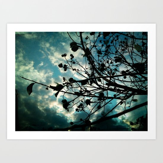 Buds and Branches Art Print