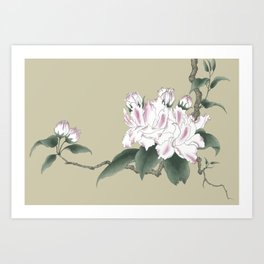 Malus halliana 2 Art Print