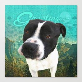 BOB (shelter pup) Canvas Print
