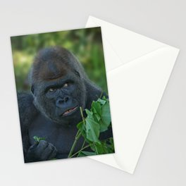 Silverback Got His Eye One Some More Leaves Stationery Cards