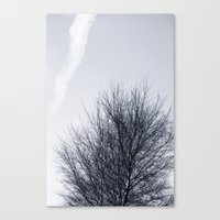 cloud Canvas Prints featuring Cloud by Anne Staub