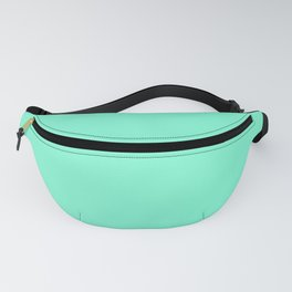 The color mint . Fanny Pack