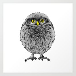 Fluffy cute baby owl Art Print