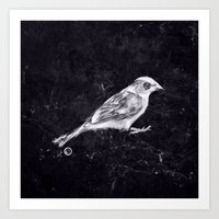 sparrow Art Prints featuring Sparrow by Adam Dunt
