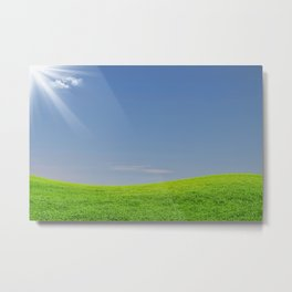 Green grass and blue sky Metal Print
