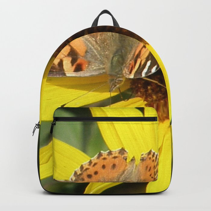 Painted Lady Butterfly Picks Pollen Backpack