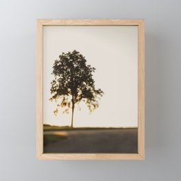 The Tree at The Top Framed Mini Art Print