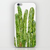 cacti iPhone & iPod Skins featuring CACTI by Jennifer Lambein
