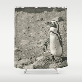 Black and White African Penguin - Photography #Society6 Shower Curtain