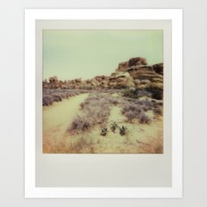 Arches National Park - Polaroid Art Print