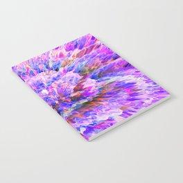 Anima Notebook