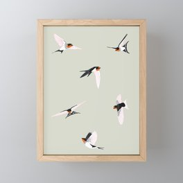 Dance of the welcome swallows Framed Mini Art Print