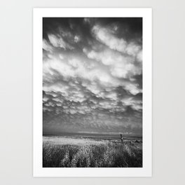 Storm Field Art Print