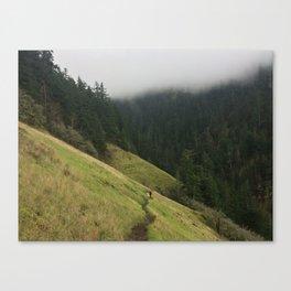 Starvation Creek Meadows Canvas Print