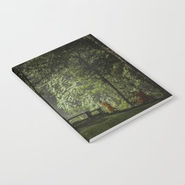 Serenity Walks Notebook