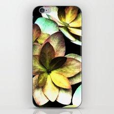 Camaïeu iPhone & iPod Skin