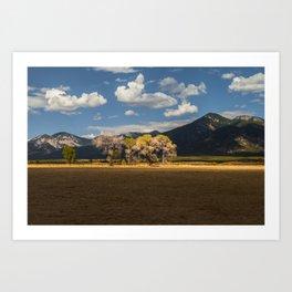 New Mexico - Summer Gold Art Print