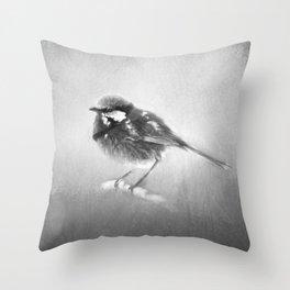 Splendid Fairy Wren In Black And White Throw Pillow