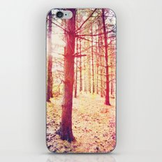 Fantasy in the Pines iPhone & iPod Skin