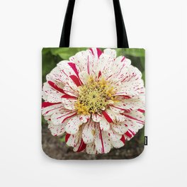 Candy Cane Zinnia Tote Bag