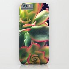 Succulents Slim Case iPhone 6s