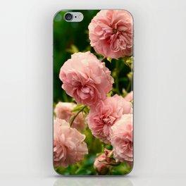 Dreaming in Roses iPhone Skin