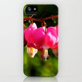 Pink Bleeding Hearts After an Evening Sun Shower iPhone Case