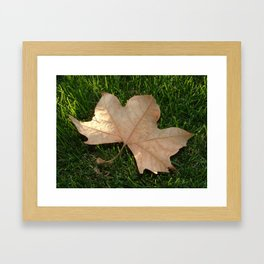 Leaf It Be Framed Art Print