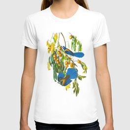 Florida Scrub Jay John James Audubon Vintage Birds Of America Illustration T-shirt