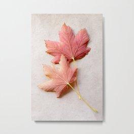 Maple Reds Metal Print