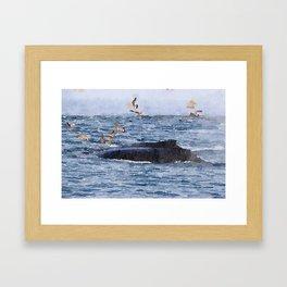 Humpbacks and Gulls Framed Art Print