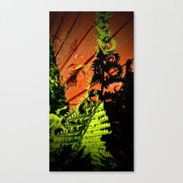 Twists and Ferns Canvas Print