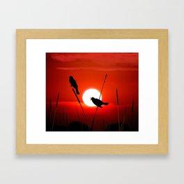 Blackbirds On Red Sunset. Framed Art Print