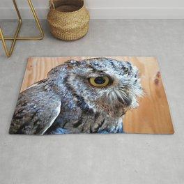 Western Screech Owl profile Rug