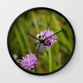 Bee on Chives Wall Clock