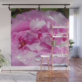 Pink Peony with Rain Drops Wall Mural