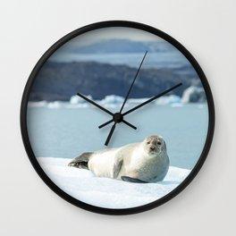 Seal relaxing on an iceberg in Jökulsárlón glacier lagoon | Travel photography Iceland Wall Clock