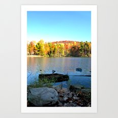 fall bliss Art Print