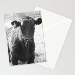 #113 Stationery Cards