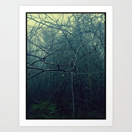 My Forest Trees Art Print