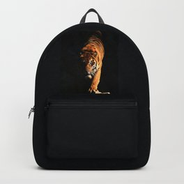 Portrait of a tiger prowling through the dark. Panthera tigris altaica. tiger on hunt  Backpack