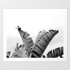 TROPICAL VIBE - black and white Art Print