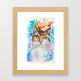 A Cat's eyes Framed Art Print