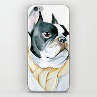 french bulldog iPhone & iPod Skins featuring French Bulldog by Dr.Söd