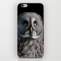 grey iPhone & iPod Skins featuring GREY OWL by Catspaws