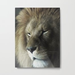 A Thoughtful King Metal Print