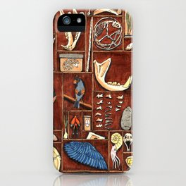 Curious Cabinet iPhone Case